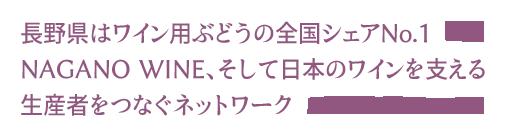 長野県はワイン用ぶどうの全国シェアNo.1。NAGANO WINE、そして日本のワインを支える生産者とワイナリーをつなぐネットワーク